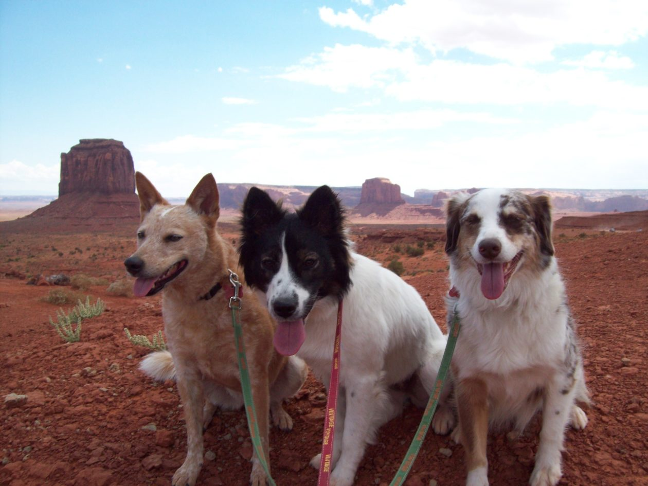 The Girls in Monument Valley
